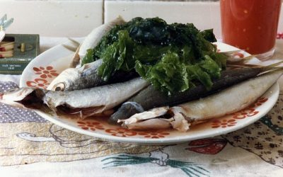 Fisk og skaldyr kan hjælpe med at forebygge slidgigt