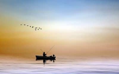 Få endnu friskere fisk ved at fange dem selv