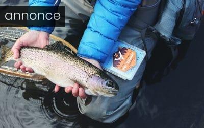 Fang selv dine fisk med disse tre gode råd